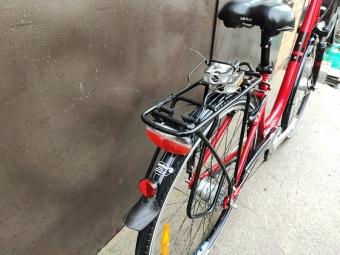 Велосипед PEGASUS Piazza (777672)