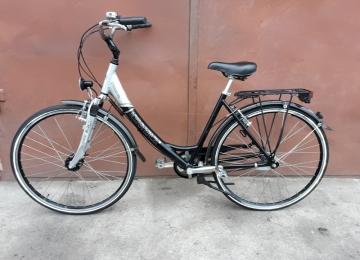 Велосипед RABENEICK Vabene Elit (777296)