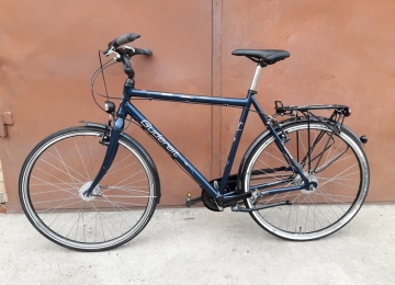 Велосипед GUDEREIT Fantasy (777361)