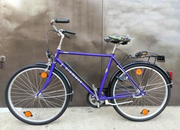 Велосипед DIAMANT Rubin (777483)